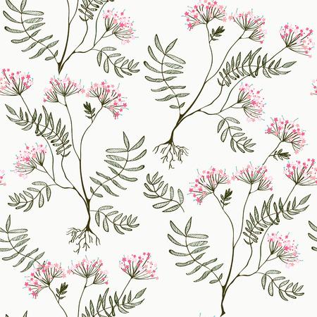 officinalis: Valeriana seamless pattern - medicine for heart illustration