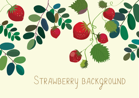 Strawberry background with leaves and fruits Çizim