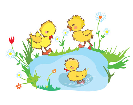 duckie: Funny ducks in the pond and flowers - illustration