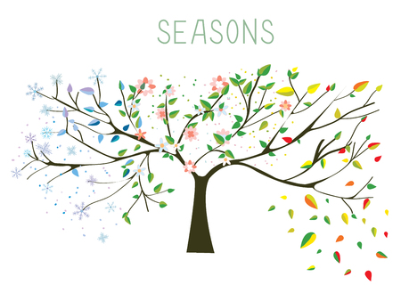 4 leaf: Tree during four seasons concept - vector illustration