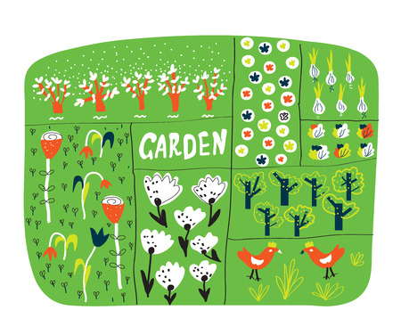 plan: Garden plan with beds funny illustration - vector
