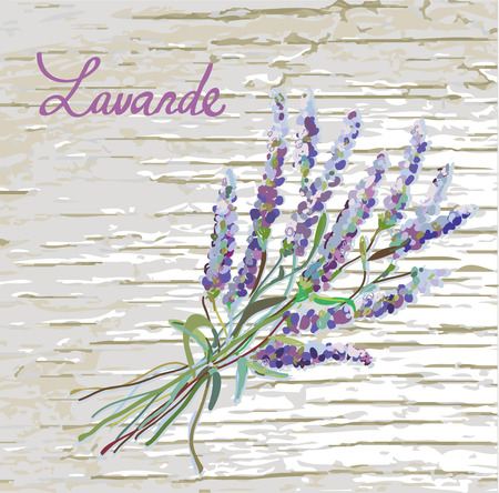 aromatic: Lavander rustic background with nice design - vector illustration Illustration