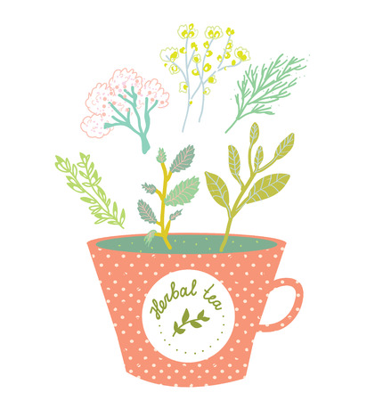 herbal: Herbal tea cup retro style vector illustration