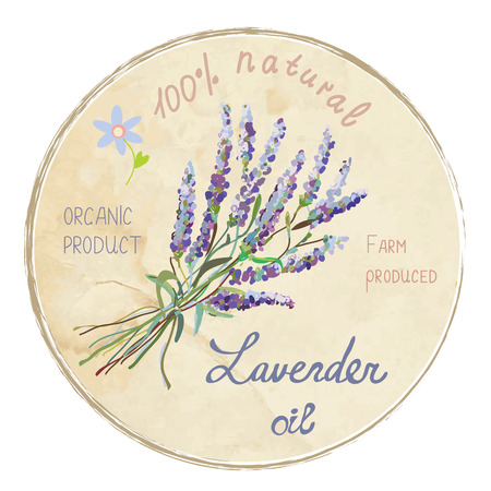 lavender flower: Lavender oil design label illustration. Suitable for a natural products, cards, backgrounds.