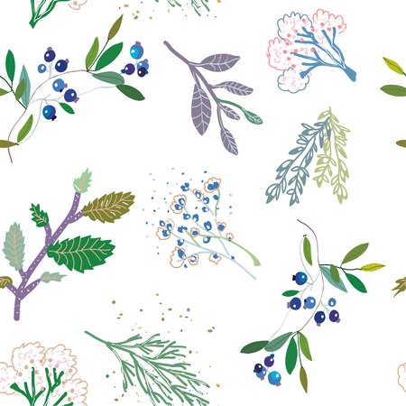Herbal medicine plants seamless pattern Illustration
