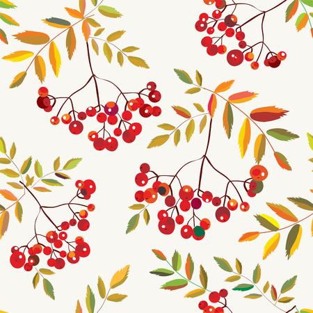 graphic pattern: Rowan berries seamless autumn pattern graphic decorative illustration Illustration