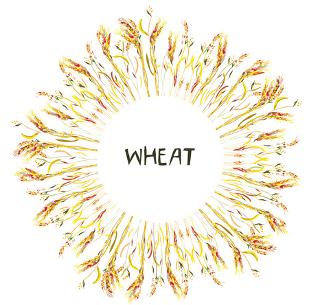 Wheat frame for the bakery label or card. Vector graphic illustration
