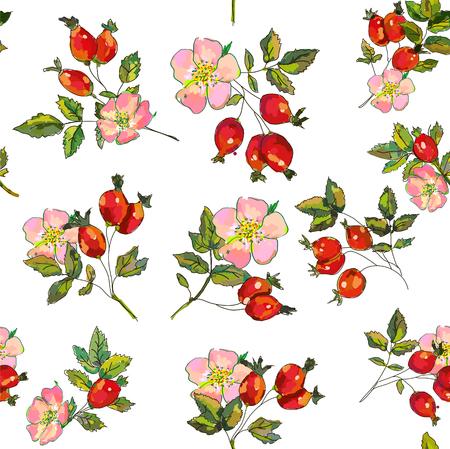 Rosehip berries and flowers seamless pattern. Vector graphic illustration Vektorgrafik