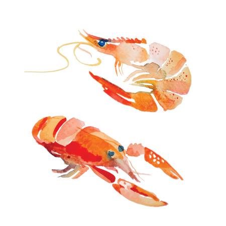 Camarones de la acuarela. Productos del mar fresco. Pintura hecha a mano