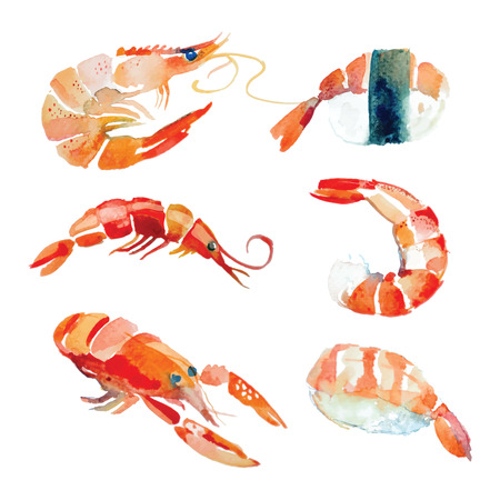 Watercolor hand drawn sushi, seafood, lobster in vector. Vettoriali