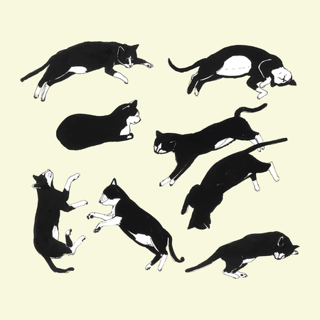 cat stretching: Hand drawn cats sleeping in different poses. Vector illustration.