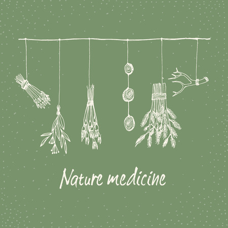 Hand getrokken droge kruiden en planten krans illustratie in vector. Natuurlijke geneeskunde illustratie. Stock Illustratie