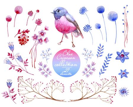 Crimson blue collection. Natural cliparts for wedding design, artistic creation.