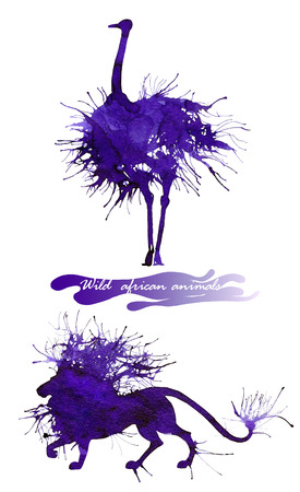 Wild african animals. The ostrich and the lion. Natural cliparts for wedding design, artistic creation.