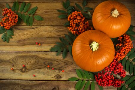 coloured background: pumpkins, rowan berries and leaves on wooden background Stock Photo