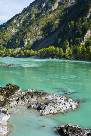 katun: Vertical view of the rocks on the turquoise river bottom flowing between the rocks of the mountains, Katun river, Altai Mountains, Russia