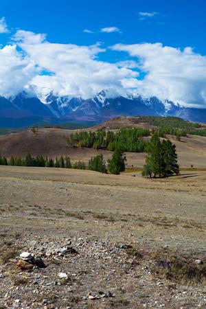 aktru: Vertical vew of the glacier in the snow-capped peaks. Aktru glacier Altay mountains, Chuya Alps, Siberia, Russia