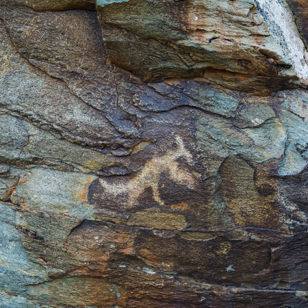 Ancient petroglyphs carved in rocks. Stones with petroglyphs in the Chuya Steppe, Kuray steppe in the Siberian Altai Mountains, Russia