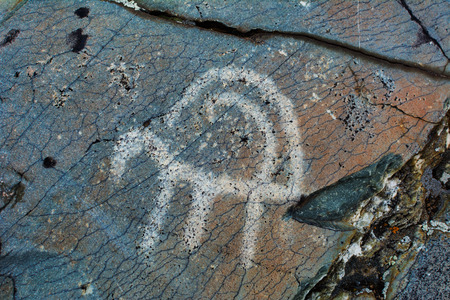 Prehistorical petroglyphs carved in rocks. Stones with petroglyphs in the Chuya Steppe, Kuray steppe in the Siberian Altai Mountains, Russia