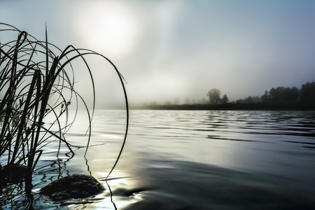reveille: Beautiful river landscape with dawn mist and morning dew. Selective focus. Summer idyllic beautiful landscape. Stock Photo