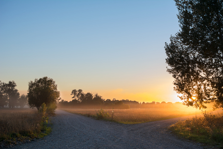 forked road: Concept of choice the correct way. Beautiful landscape with sunrise over crossroads spliting in two ways. Rural crossroads on sunset background