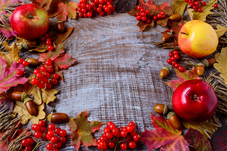 Frame of apples, acorns, berries and fall leaves on the rustic wooden background. Thanksgiving background with seasonal berries and fruits. Stock Photo