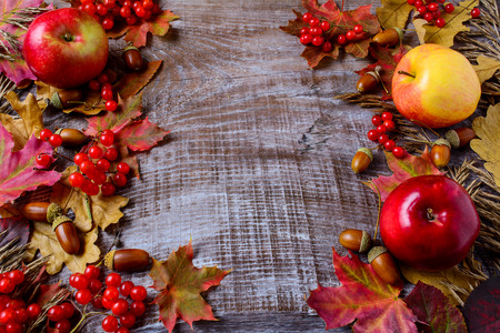 Abundant harvest concept with apples, acorns, berries and fall leaves. Thanksgiving background with seasonal berries and fruits.