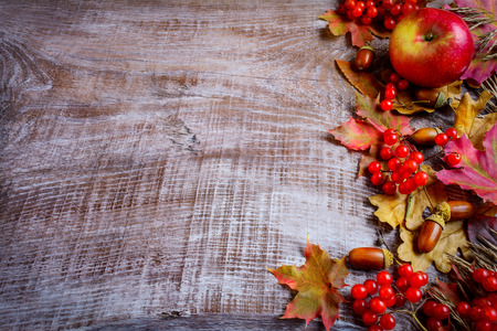 wild oats: Border of ripe fruits and fall leaves on the dark wooden background. Thanksgiving background with seasonal fruits.  Copy space