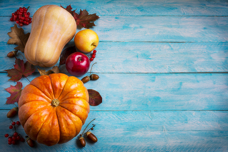 Thanksgiving  greeting with orange pumpkins and fall leaves on blue background. Thanksgiving background with seasonal vegetables and fruits. Copy space