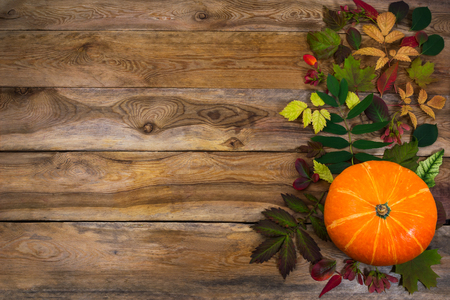 Happy Thanksgiving  greeting with squash and autumn leaves on the right side of old wooden table. Fall background with seasonal vegetables and leaves, copy space