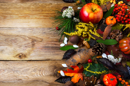 Fall decoration with pumpkin and rowan on wooden table. Thanksgiving greeting with seasonal symbols Stock Photo