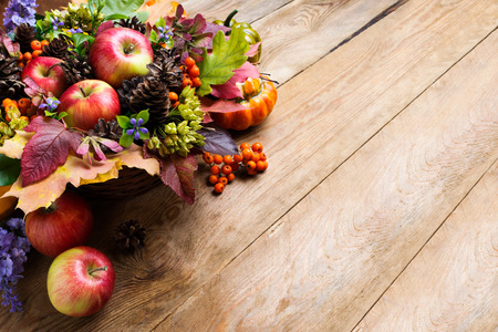 Thanksgiving or fall background with apples, rowan berries, cones and blue flowers arrangement, copy space