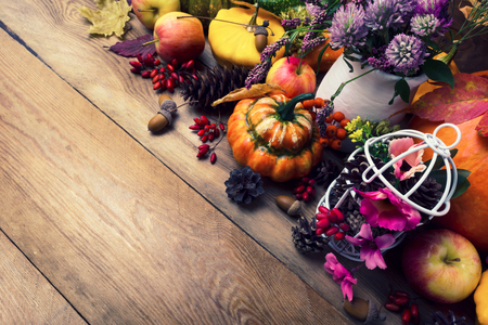 Toned fall background with pumpkins, apples, berries, acorns, cones, clover and pink flowers, copy space