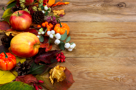 Fall greeting background with apples, white berries, golden maple leaves on the old wooden table, copy space Stock Photo