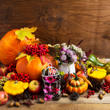 Thanksgiving arrangement with pumpkins, vegetables, rowan berries, clower and pink flowers decorated birdcage, copy space
