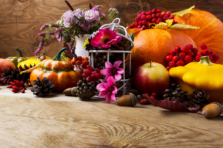 eberesche: Fall table centerpiece with pumpkins, vegetables, rowan berries and pink flowers decorated birdcage, copy space