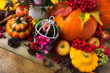 Fall background with pumpkins, apples, berries, acorns, cones and pink flowers Stock Photo