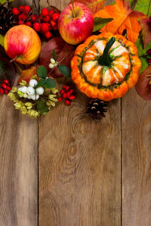 Thanksgiving greeting with decorative pumpkin, apples, rowan, white berries on the rustic wooden background, copy space