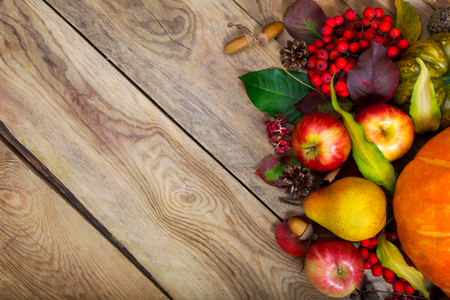Thanksgiving background with pumpkin, apples, pear, rowan berries, colorful leaves and acorns, copy space.