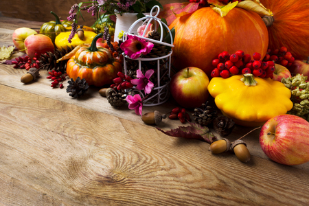 Fall arrangement with pumpkins, rowan berries, barberry, clower, birdcage decorated cones and pink flower, copy space