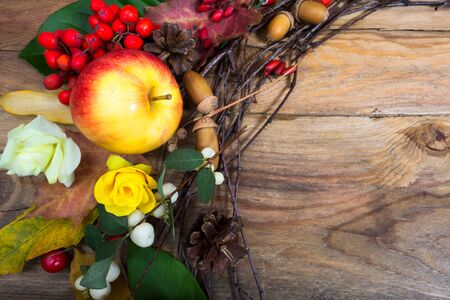 Thanksgiving background with apple, rowan berries, acorns and yellow rose on the wooden table, copy space