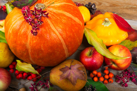 Thanksgiving or fall background with orange pumpkin, yellow squash, apples, pear, rowan berries, colorful leaves