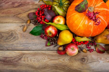 Thanksgiving greeting background with pumpkin, apples, pear, rowan berries and colorful leaves table centerpiece, copy space.