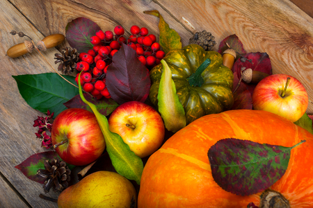 Thanksgiving background with pumpkin, apples, pear, rowan berries, green squash, fall colorful leaves and acorns.