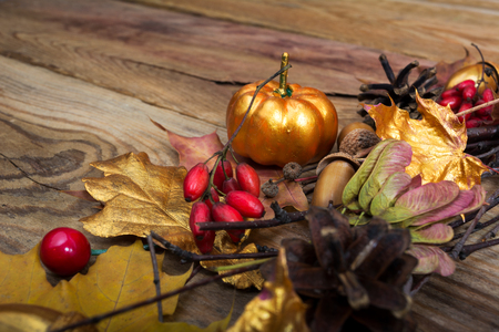 Fall or Thanksgiving background with acorns, red berries, golden pumpkin and maple leaves on the rustic wooden table