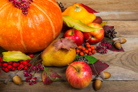Thanksgiving or harvest background with pumpkin, squash, apples, pear, rowan berries, colorful leaves and acorns.