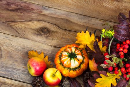 Fall greeting background with ripe apples, decorative pumpkin, rowan berries and oak leaves on the rustic wooden table, copy space Stock Photo