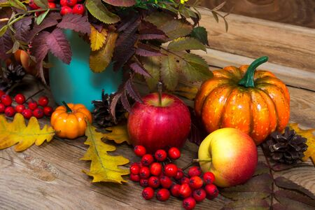 Thanksgiving arrangement with rowan berries, apples, pumpkin and turquoise vase Stock Photo