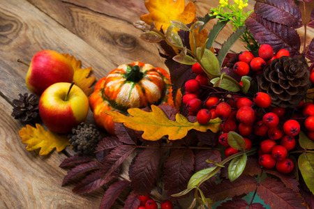 Harvest background with rowan berry and  leaves, cones, apples, pumpkin on the rustic wooden table