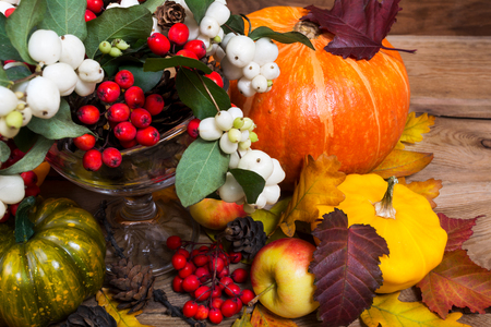 Thanksgiving or fall background with snowberry and rowan, pumpkin, colorful leaves, cones